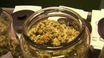 Pot Advocates Push Back on Concerns Raised by Some Health Professionals