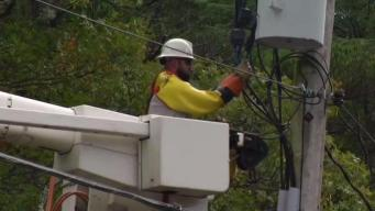 National Grid Fined $750,000 for Response to 2017 Wind Storm