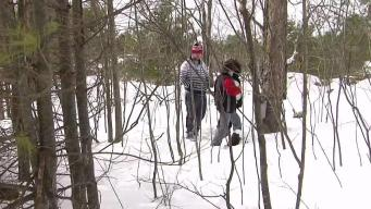 Program in NH Teaches Kids to Make Maple Syrup