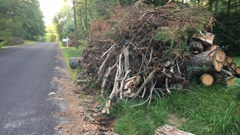 Southbury Votes to Spend $1.7 Million on Storm Cleanup