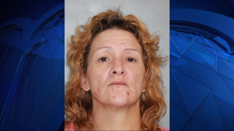 Woman With Hatchet Arrested Robbing 7-Eleven in Mass., Police Say