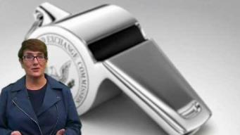 Sue Explains: What is a Whistleblower?
