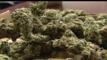 Lawmakers Consider Marijuana Conviction Expungement Measure