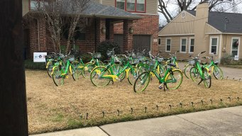 'I Guess It's Called Getting Biked': Dallas Family Gets Pranked on Christmas