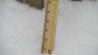 How Much Snow Did You Get? Check Out Totals From Tuesday's Storm