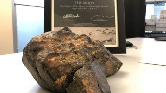 12-Pound Lunar Meteorite Sells for More than $600,000