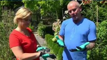 Garden Genie Gloves: Do They Work?