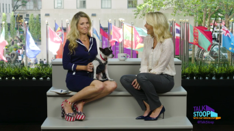 Megyn Kelly Discusses Her New Show on 'Today'