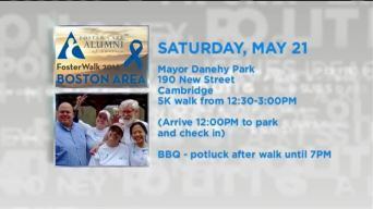 Foster Care Support Walk