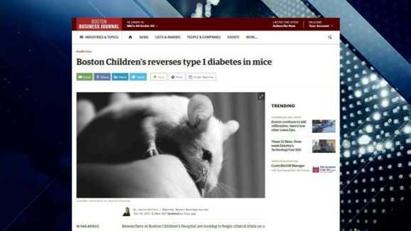 BBJ Report: Potential Cure for Type 1 Diabetes