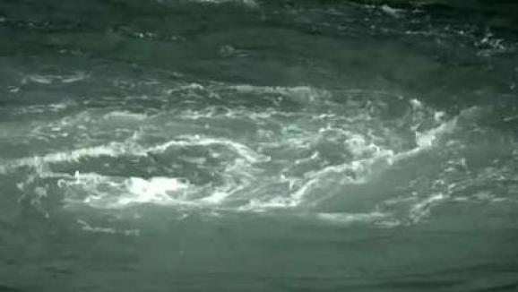 Exploring the 'Old Sow' Whirlpool