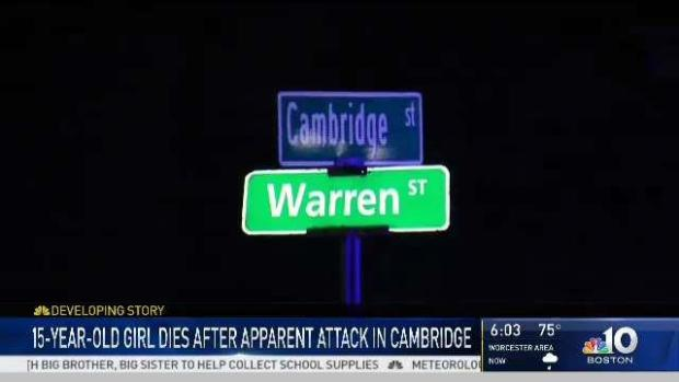 [NECN] 15-Year-Old Girl Dies After Attack in Cambridge