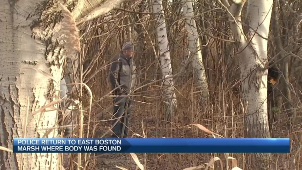 [NECN] Police Return to East Boston Marsh Where Body Was Found