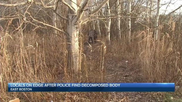 [NECN] Police Continue to Comb Marsh Where Body Was Found