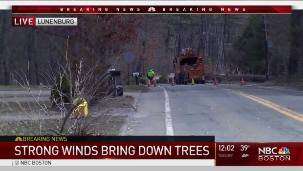 [NECN] Heavy Winds Knock Down Utility Poles, Trees