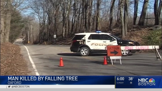 [NECN] Tree Kills Man in Oxford, Mass.