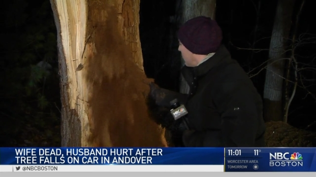 [NECN] 1 Dead After Tree Falls Onto Car in Andover