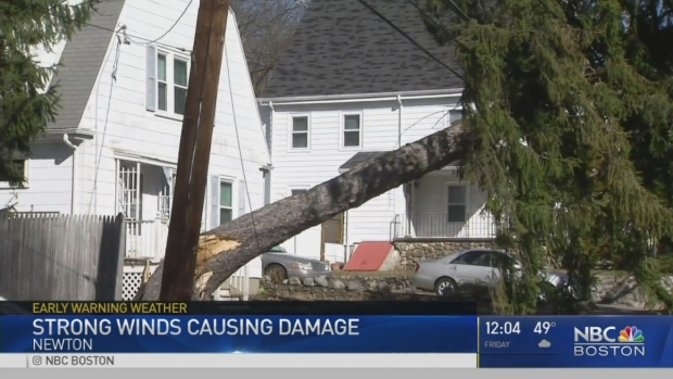 [NECN] High Winds Bring Down Trees, Power Lines