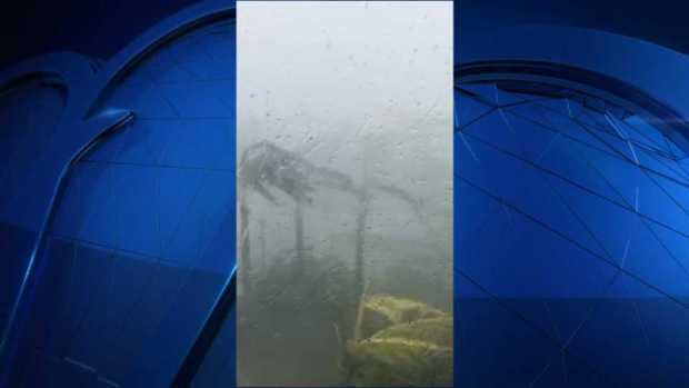 Viewer Video: Irma Brings Heavy Winds and Rain to Florida