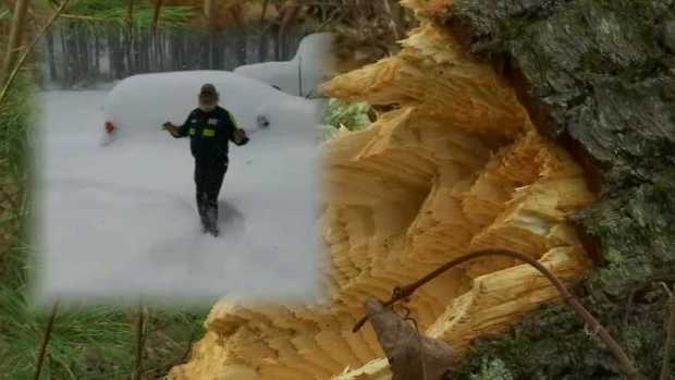 [NECN] Vt. Man Injured Clearing Storm Debris in 'Freak Accident'