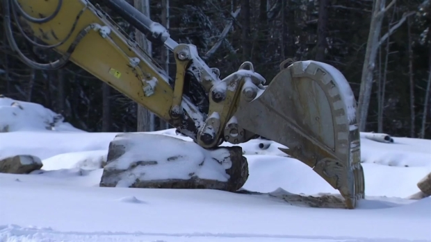 [NECN] Popular Maine Attraction Fights to Expand