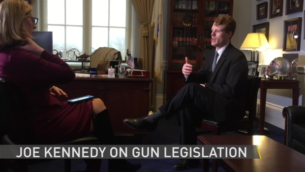 Kennedy on Guns: 'I Would Support an Assault Weapons Ban'