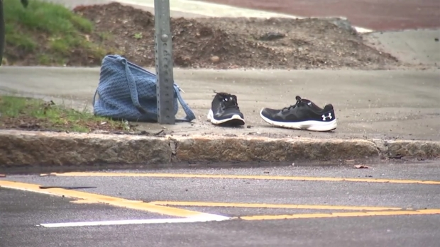 [NECN] Police Investigating Death of Woman Hit by Car in Norwood