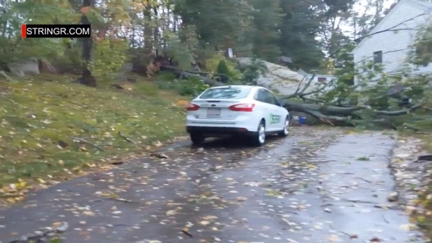[NECN] Tree Down in Milford, Mass.