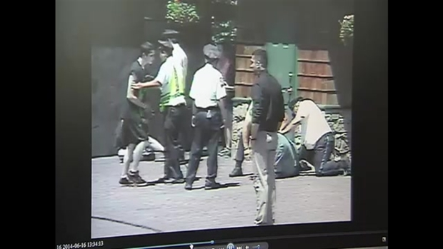 [NECN] SURVEILLANCE VIDEO: Family, Police Brawl at Canobie Lake Park