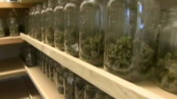 [NECN] Concerns Over Future of Recreational Marijuana in Mass.