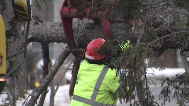 Crews Respond to Wind Damage Around Region