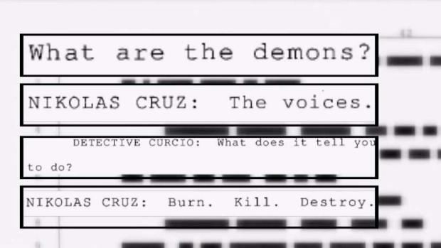 Details Into Cruz's Interrogation Room Statements