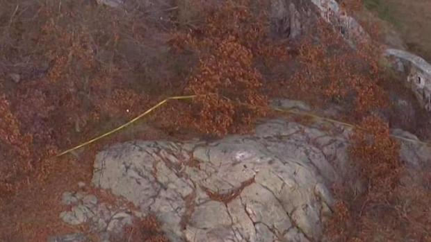 [NECN] Dog Walker Discovers Burned Body in Lynn Woods