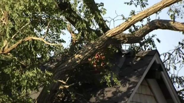 [NECN] Extensive Damage After 2 Tornadoes on Cape Cod
