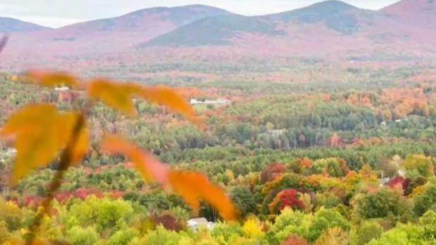 [NECN] Fall Foliage Means Big Business for Northern New England