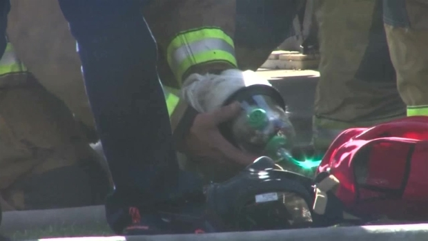 [DFW] Firefighters Save Dog With Help From Girl Scouts