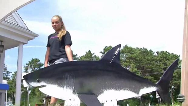 [NECN] Girl Fights Plan to Kill Sharks Near Beaches