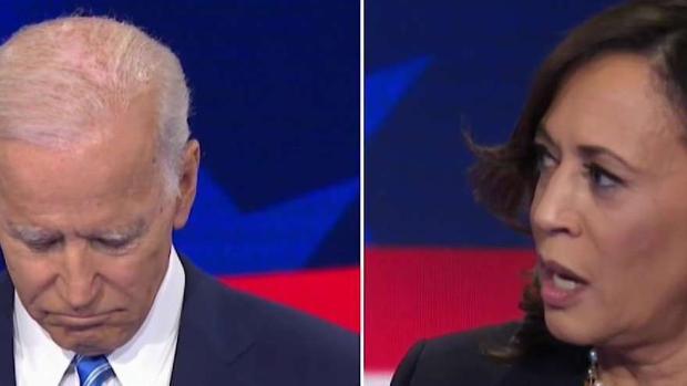[NECN] Kamala Harris in Virtual Tie With Joe Biden in Poll