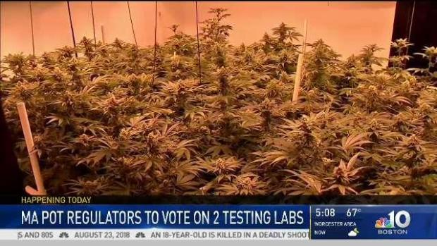 [NECN] Mass. Pot Regulars to Vote On Weed Testing Labs