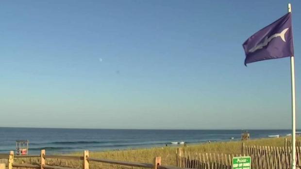 [NECN] Multiple Shark Sightings Close Cape Cod Beaches