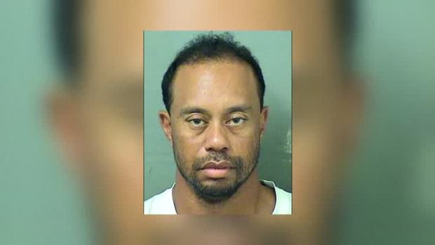 [NATL] Tiger Woods Arrested