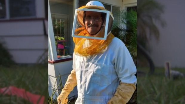 [NATL] Grandfather Stung 150 Times While Trying to Dislodge Bee Hive