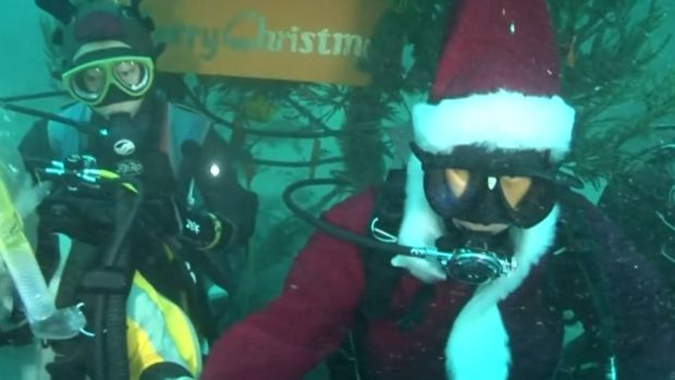 Annual Tradition of a Scuba Diving Santa