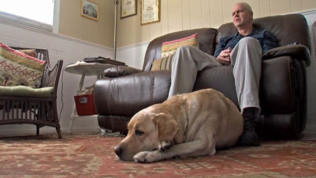 Blind Man and Guide Dog Attacked by Two Pit Bulls