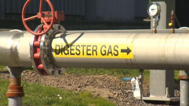 [NATL] 'Poop to Power': Portland to Convert Waste to Natural Gas
