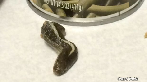 Severed Snake Head Found in Can of Green Beans