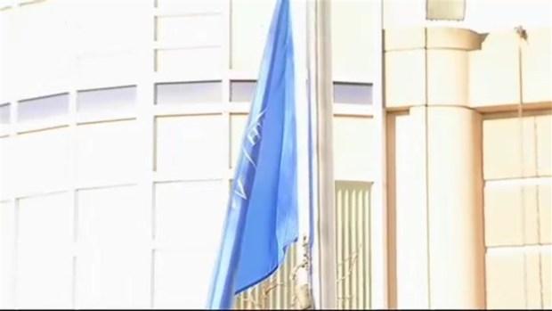 Brigham Flag Lowered