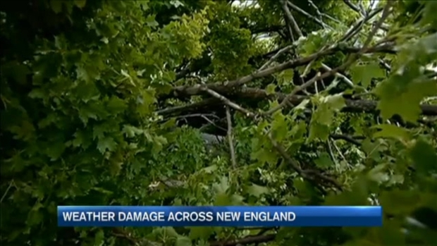 [NECN] Storms Cause Damage in Parts of New England