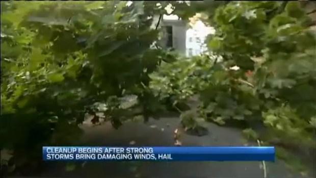[NECN] Severe Storm Cleanup Begins