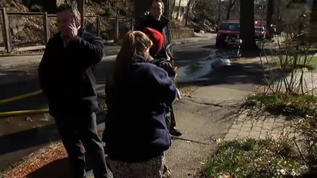Firefighters Rescue Cats From Brookline, Mass., Fire